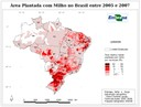 Area Plantada com Milho no Brasil entre 2005 e 2007